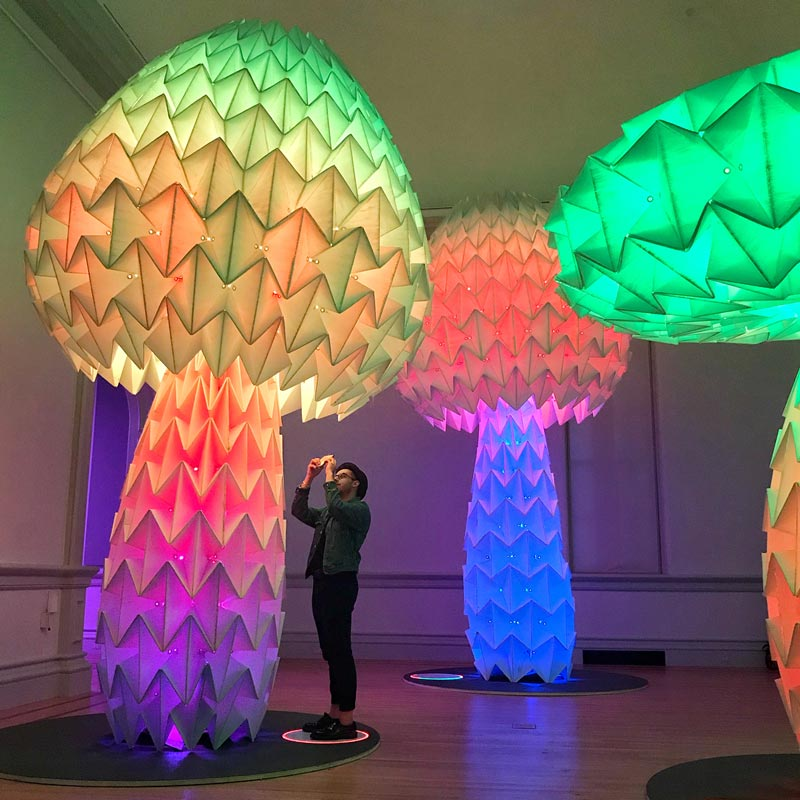 @allie.at.large - Shrumen Lumen mushrooms at No Spectators Burning Man exhibit - Smithsonian American Art Museum's Renwick Gallery in Washington, DC