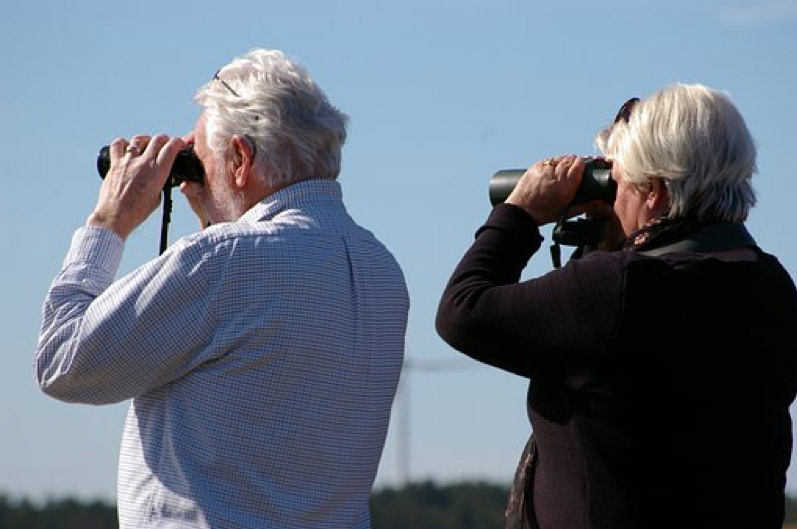 Bird watchers at Roaches Run Waterfowl Sanctuary in Arlington - Outdoor things to do in Virginia near the waterfront