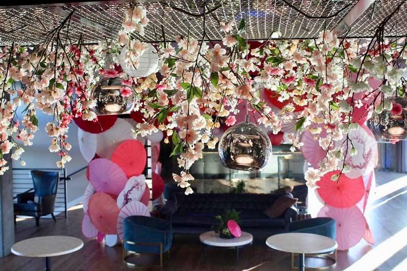 Cherry Blossom Terrace at La Vie - Cherry blossom bar in Washington, DC