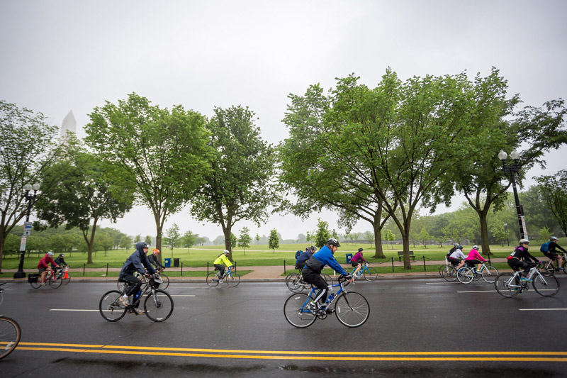 DC Bike Ride - Family Friendly Outdoor Spring Activity in Washington, DC