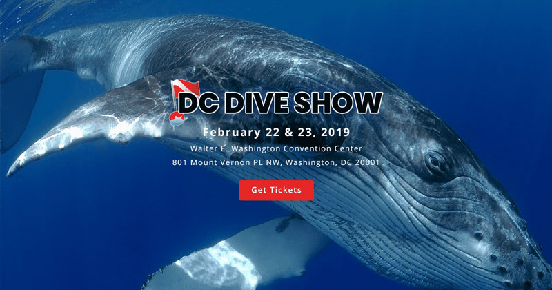 DC Dive Show | Things to Do in Washington, DC in February