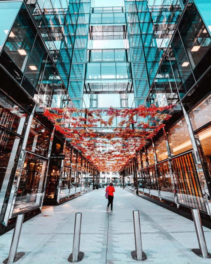 @drewfolgmann - Fall foliage Palmer Alley installation in CityCenterDC - Shopping and dining destination in Washington, DC