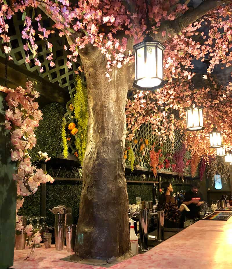 The Cherry Blossom PUB (Pop-Up Bar) in Shaw - Things to do in Washington, DC during the National Cherry Blossom Festival