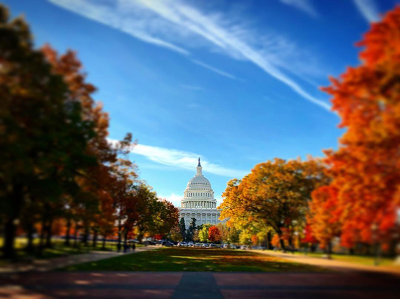 @dustinlauermann - Fall colors surrounding the United States Capitol - Where to Instagram fall photos in Washington, DC