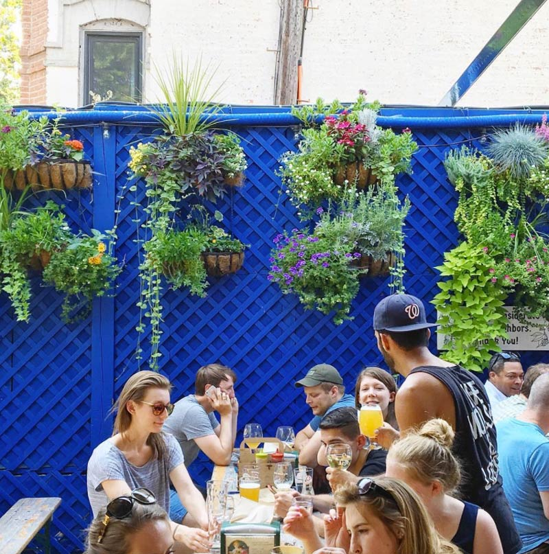 @frenchieyankee - Dacha Beer Garden in Shaw - Outdoor Beer Gardens in Washington, DC