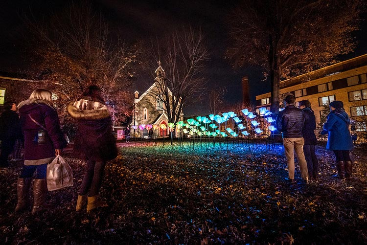 Georgetown Glow winter public art installation - Free things to do this winter in Washington, DC