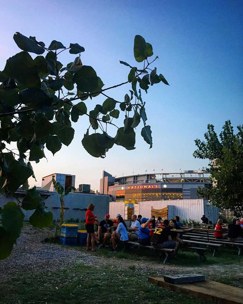 @giopalatucci - Sunset at Bardo Brewing Co. near Nationals Park - Outdoor beer garden in Washington, DC