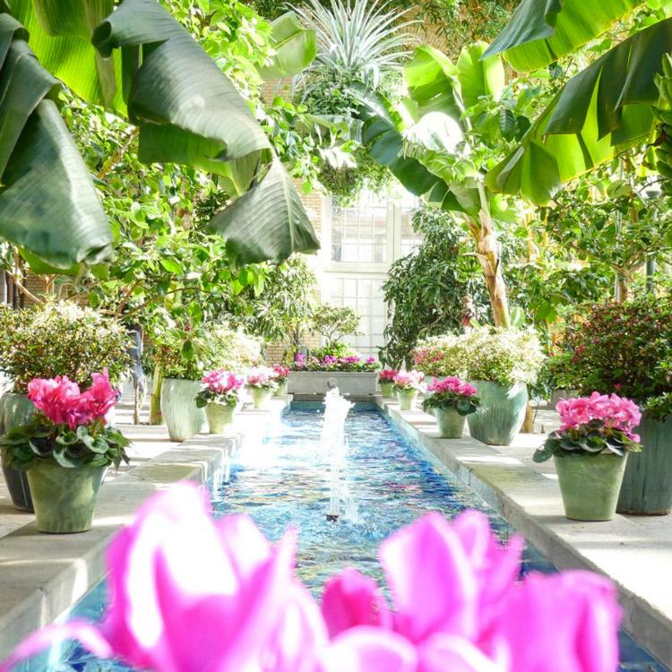 @havetoothbrushwilltravel - United States Botanic Garden - Things to Do in Washington, DC