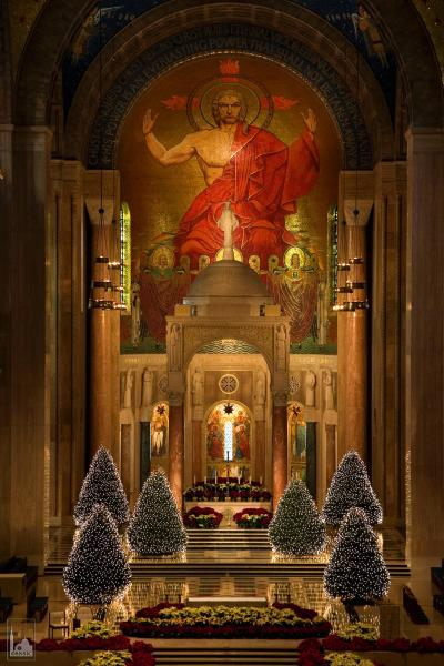 Image result for National Shrine of the Immaculate Conception in Washington.