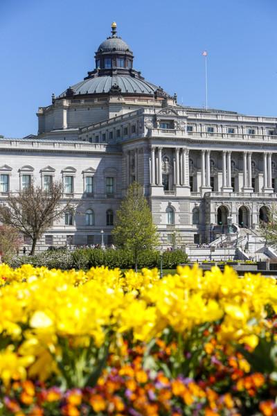 library of congress washingtonorg
