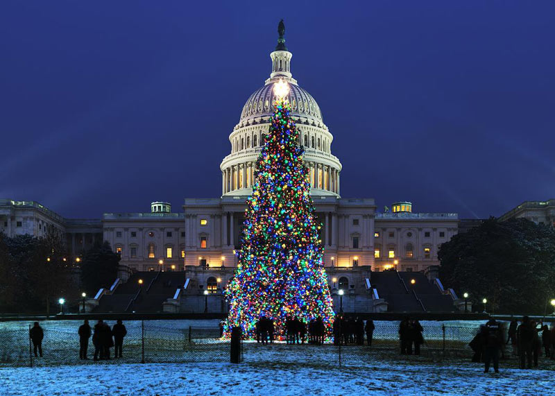 @insiteimage - Nighttime at the United States Capitol Christmas Tree - Holiday light displays in Washington, DC