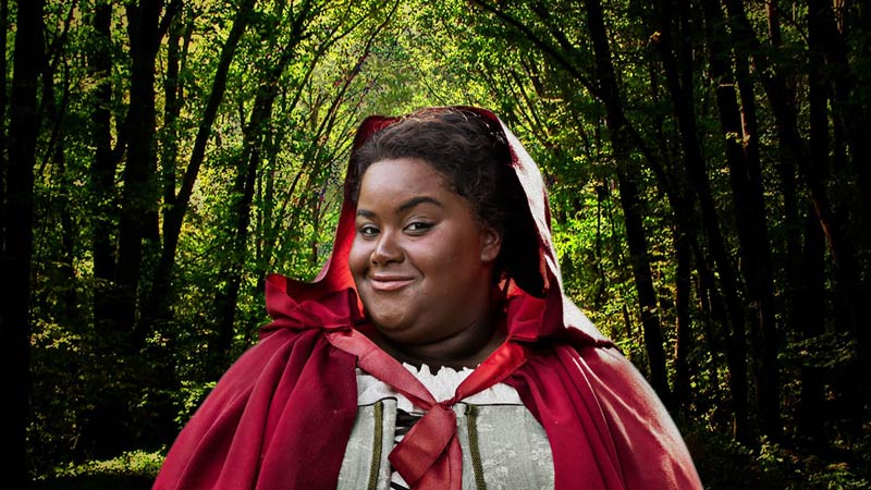 Into the Woods at Ford's Theatre in Washington, DC - The best theater this month in DC
