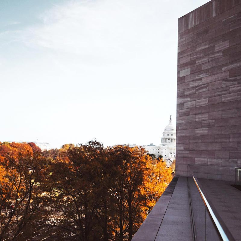 @julesdane - View of fall foliage from the National Gallery of Art East Building Terrace - Fall foliage in Washington, DC