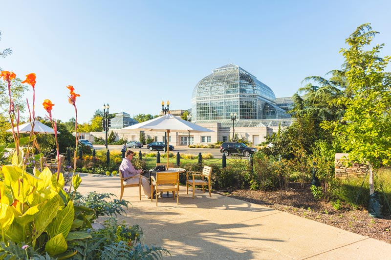 Public park next to U.S. Botanic Garden on Capitol Hill - Free things to do in Washington, DC