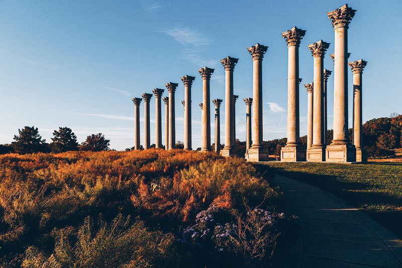 @markalanandre - Fall foliage at the U.S. National Arboretum Capitol Columns - Free outdoor activity in Washington, DC