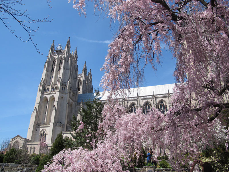 Bishop's Garden at the Washington National Cathedral - Free Things to Do This Spring in Washington, DC