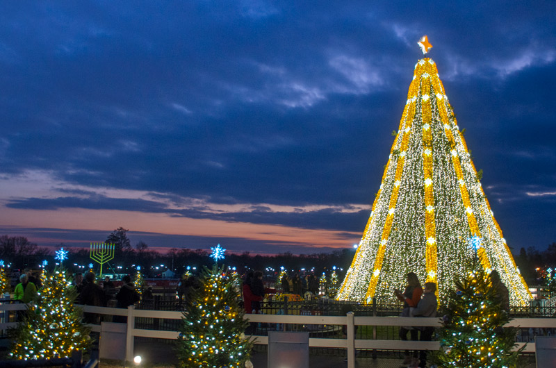 National Christmas Tree - Holiday Displays & Events in Washington, DC