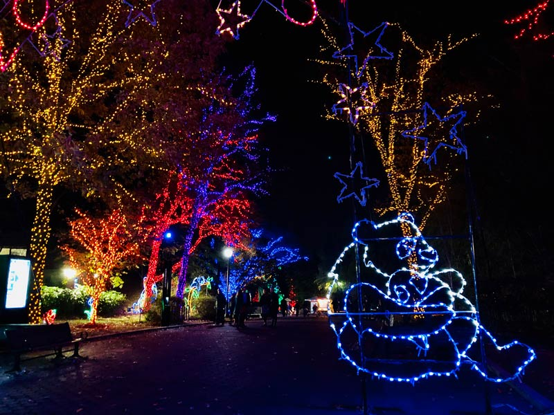 ZooLights winter holiday celebration at Smithsonian National Zoo - Free family friendly things to do in Washington, DC