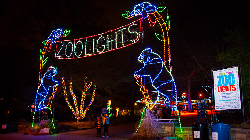 ZooLights at the Smithsonian National Zoo - Holiday Displays in Washington, DC