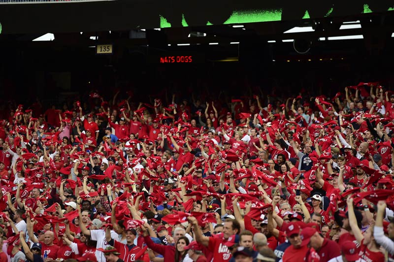 Washington Nationals crowd at home game - Baseball in Washington, DC