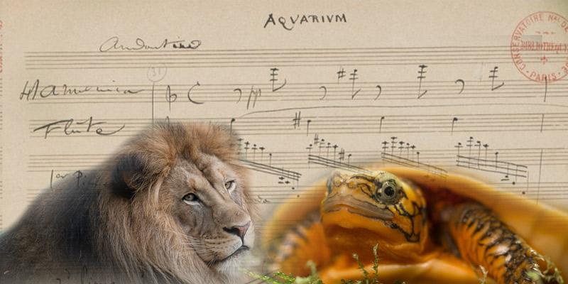 National Symphony Orchestra at the Zoo - Family-friendly event this spring in Washington, DC