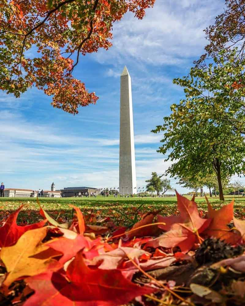 @patrickvburton - Fall foliage on the Washington Monument grounds - Things to do this fall in Washington, DC