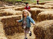 Fall Harvest Family Days at Mount Vernon - George Washington's Mount Vernon