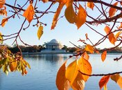 @momofmamony - Thomas Jefferson Memorial in Fall