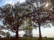 @nyjabrown - Sunny spring day on the Washington Monument grounds - Things to do outside on the National Mall in Washington, DC