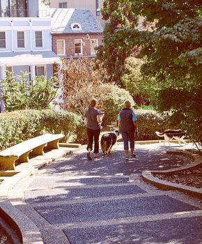 Walking through Meridian Hill Park - Fall - Washington, DC