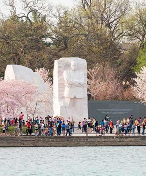 View of the Martin Luther King, Jr. Memorial during cherry blossom season - Memorials on the National Mall in Washington, DC