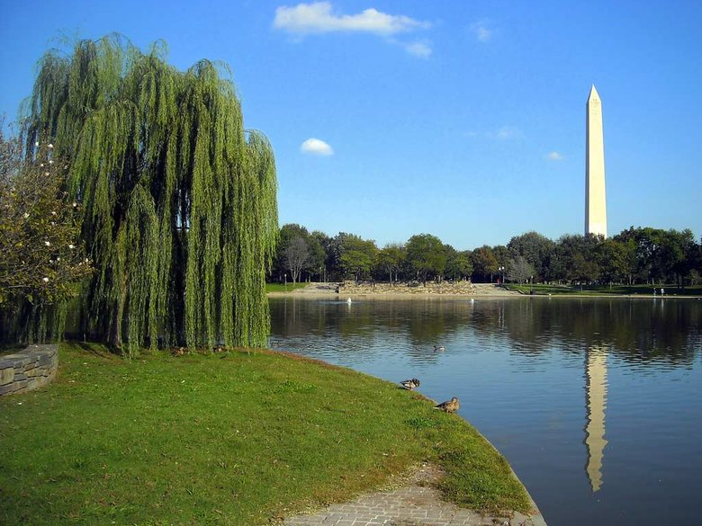 Constitution Gardens - National Mall - Washington DC