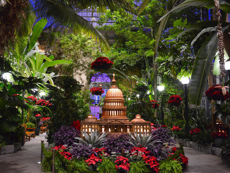 Seasons Greenings at the United States Botanic Garden - Holiday Events in Washington, DC