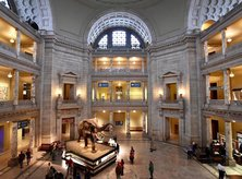 @michellefortephotography - Atrium at Smithsonian National Museum of Natural History on the National Mall - Free Museum in Washington, DC