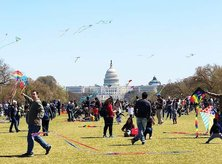 @thealex_turner - National Cherry Blossom Festival kite festival on the National Mall - Free things to do this spring in Washington, DC