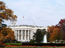 White House - Fall Foliage Surrounding South Portico - Washington, DC