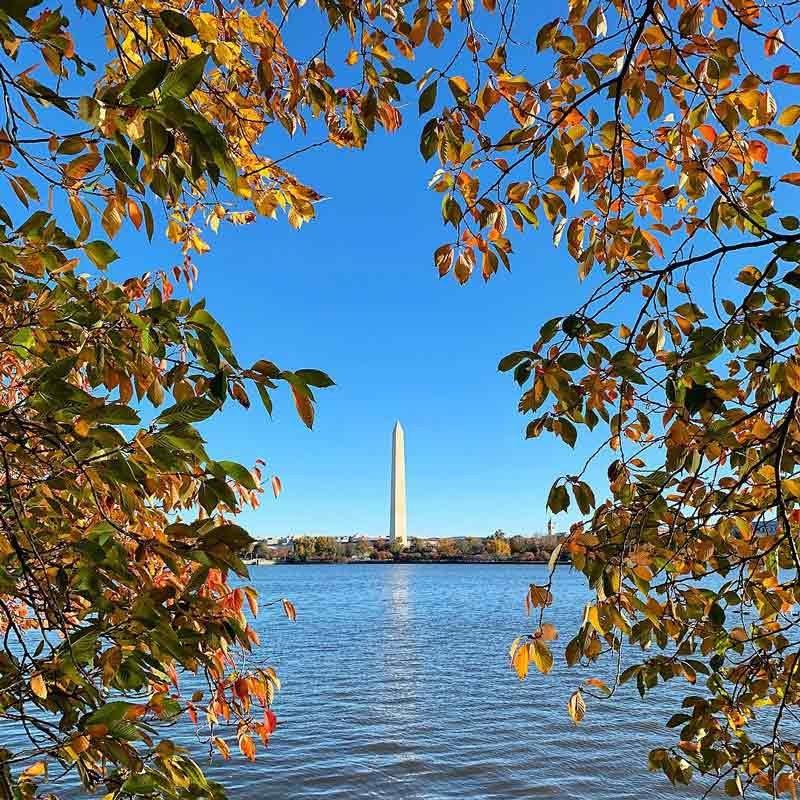 Official Tourism Site of Washington DC | Washington.org