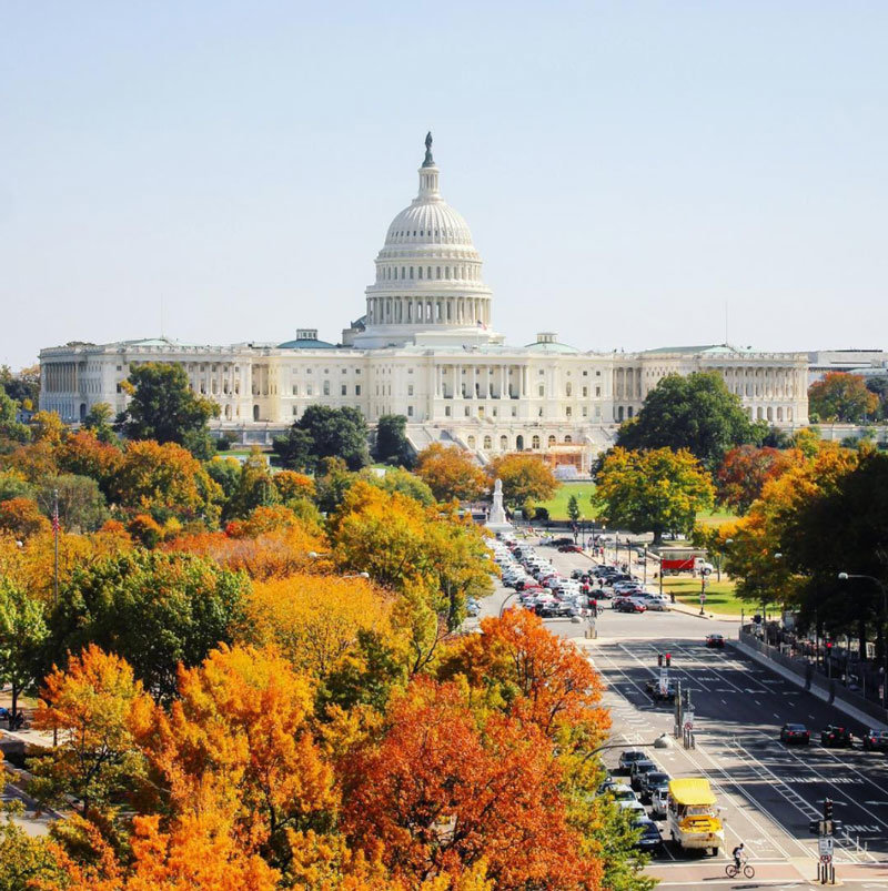 The Best Things To Do This Fall In DC Washingtonorg - 8 best places in the us to watch fall foliage