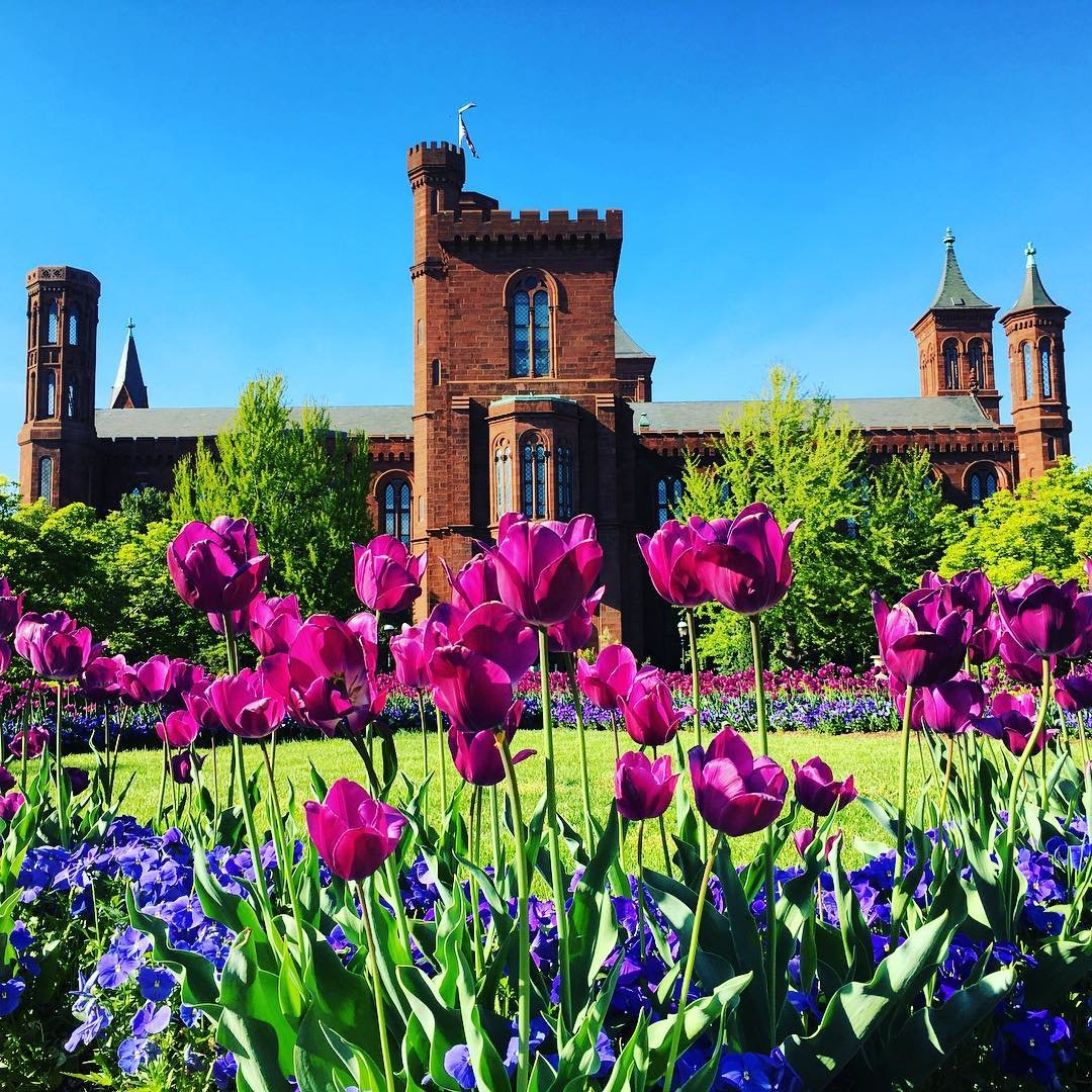 Smithsonian Institution Museums In Washington, DC