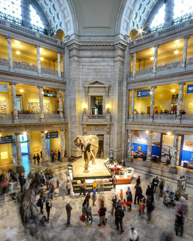 Art Places In Washington Dc: Smithsonian Institution Museums In Washington, DC