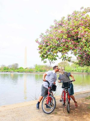 Do date night right with our ultimate guide to romance in Washington DC