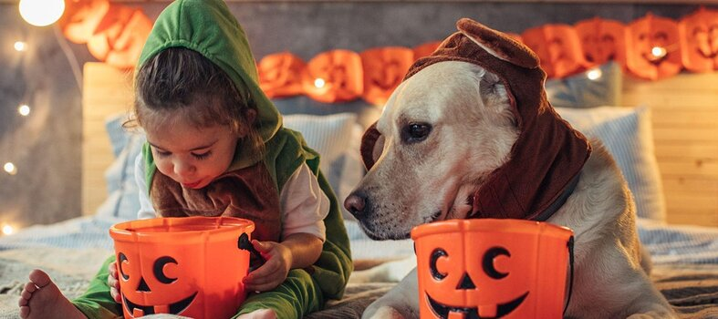 Halloween To-Go for Kids and Canines – Oct. 30