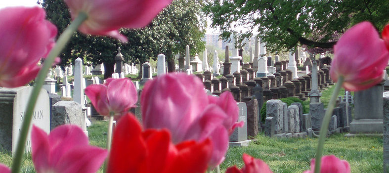 Take a self-guided tour of Historic Congressional Cemetery.