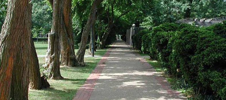 Take a socially distanced stroll through a DC park
