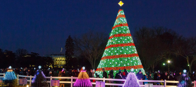 The National Christmas Tree is the star