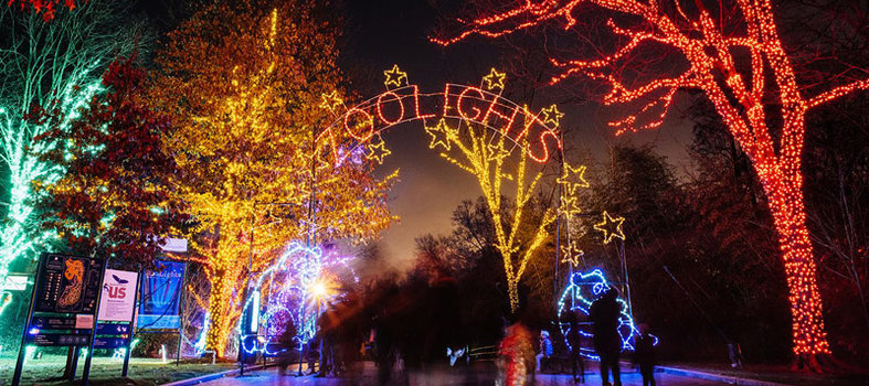 ZooLights takes over the National Zoo all month long
