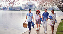 Washington, DC Itineraries - Plan Your Trip to DC