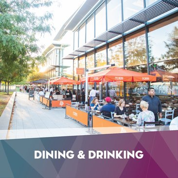 Dining & Drinking