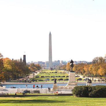 @stellanandia - Fall foliage on the National Mall - Attractions and Landmarks in Washington, DC