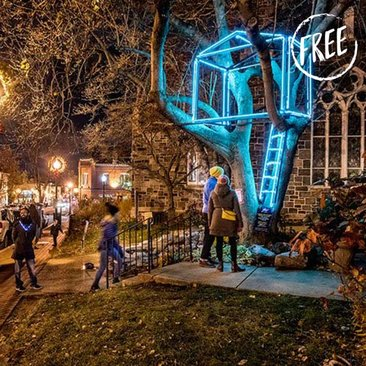 Free Things to Do This Winter in Washington, DC - Holiday light displays, celebrations and more